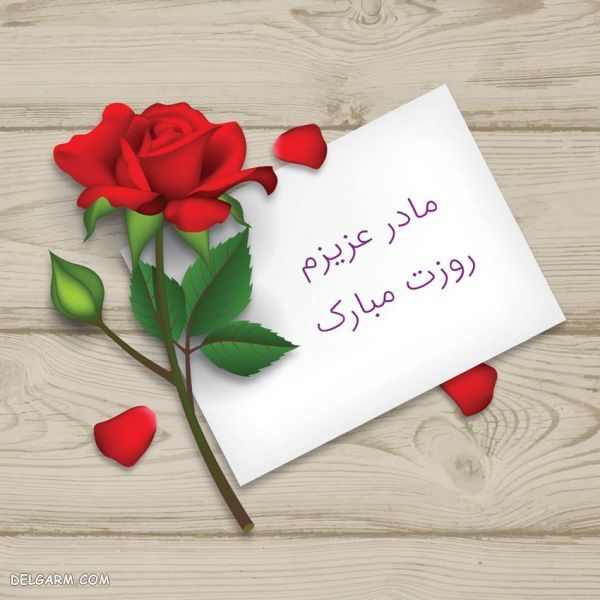 گل برای روز ولنتاین